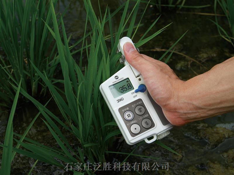 SPAD-502Plus日本美能達葉綠素儀